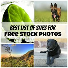Best List of Free Stock Photo Websites for Bloggers - Linneyville