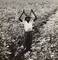 Water Boy, Mississippi Delta, United States, 1938, photograph by Dorothea Lange.