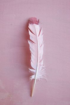 Color Psychology – What Pink Says About You | Free People Blog