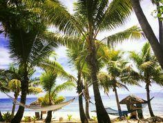Tropical island view! Amazing #treasureisland