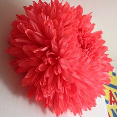 Chrysanthemum IV: A giant, incredible, bright coral chrysanthemum. This piece took approximately 70 hours from start to finish. Made of Italian crepe paper by Tiffanie Turner.