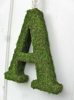 Valeria Moss Covered Letter by Cathey Helton