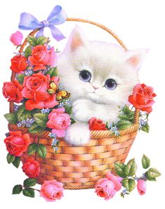 Peek a boo gif Cute Images, Cute Pictures, Wise Animals, Gif Animated Images, Happy Birthday Flower, Graphic Artwork, Beautiful Gif, Jolie Photo, Cute Cats And Kittens