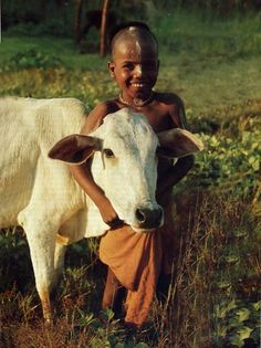 "sridharamygurudeva: ""(via Sacred Cow | Archaeology Online) """