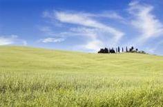 io vivo le Terre di Siena io vivo green www.green.terresiena.it