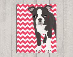 Boston Terrier AND chevron?!