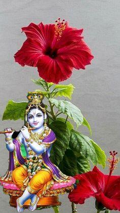 Krishna Leela, Krishna Radha, Lord Krishna, Hanuman, Shree Krishna Wallpapers, Radha Krishna Wallpaper, Saraswati Goddess, Shiva Shakti, Bunny Quotes