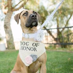 Your pooch will feel extra special standing next to you on the biggest day of your life with this DOH bandana from HelloHazelCo.