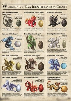 This stunning canvas is a Wyrmilng and egg Identification chart, which is part of the Age of Dragons range by top fantasy artist Anne Stokes. It is a must have for all fans of dragons and Anne Stokes. Mythical Creatures Art, Mythological Creatures, Magical Creatures, Dragon Age, Fantasy Dragon, Fantasy Art, Anne Stokes Dragon, Types Of Dragons, Water Dragon