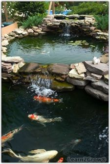 Two-level pond with waterfall