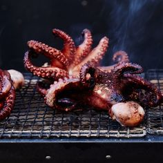 Why Chefs Love the Konro Grill - Bon Appétit Konro Grill, Grilling Recipes, Cooking Recipes, Asian Grill, Octopus Recipes, Beach Bbq, Test Kitchen, Japanese Food, Food Truck