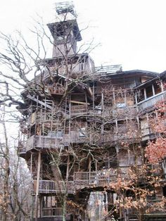 Tallest Treehouse - made from discarded materials