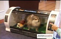 NO!!  It's Not A toaster oven!!!