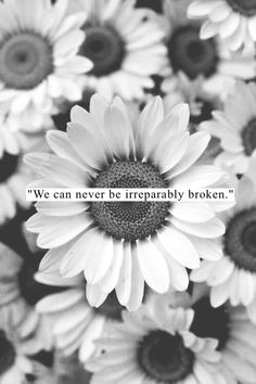 """We may be driven to the edge but never over it. Please don't jump. I'll help you build a bridge. We can slide across it together. #ride """"never broken beyond repair."""" ~ F.N."""