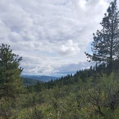 That ridge you can see in the farthest background is the Butte the south side of the Lake Chelan Valley. That should give you an idea of how far up I was. It was insanely beautiful. I had three days vacation and I told everyone I was going to go climb a mountain and I did. #washingtonstate #pacificnw #hike #nature #beauty #naturalbeauty #wanderlust #trail #wander #asatru #heathen #pagan #adventure #adventurethatislife #optoutside #wildernessculture #thenwadventure #liveauthentic #pnw…