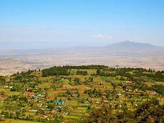 On the main road to Lake Naivasha from Nairobi, Kenya, you are likely to see wildlife wander past. Take a look!