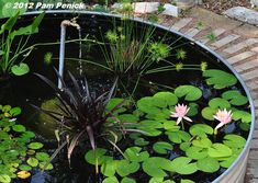 Galvanized Water Trough Back Yard Pound  Digging » Plumbing pipe fountain adds life to stock-tank pond