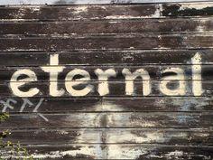 Free Image on Pixabay - Eternal, Sign, Wood, Background