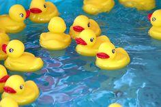 rubber ducks in water - Google Search