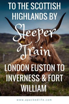 To the Scottish Highlands By Sleeper Train - Caledonian Sleeper - Taking the overnight sleeper train from London Euston to the Scottish Highlands and Lowlands.  A Guide to tickets, facilities and an account of the journey #sleepertrain #Scotland #Highlands #Lowlands