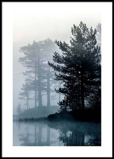 Forest by the lake Poster in the group Prints / Sizes / 50x70cm | 20x28 at Desenio AB (2861)