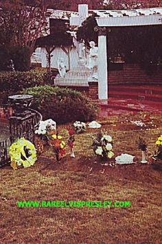 ...before the grave markers for Elvis and Gladys at Graceland