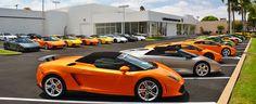 Nice car :)    Make $10,000 in the next 30 Days  http://accessmoreleads.tk