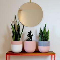 Local shopping made easy! Painted Plant Pots, Painted Flower Pots, House Plants Decor, Plant Decor, Concrete Crafts, Concrete Houses, Cement Pots, Natural Home Decor, Pottery Designs