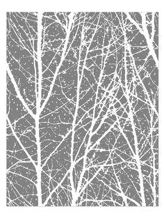 35 Best Birch Treetree Wallpaper Images In 2013 Birch Tree