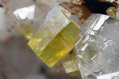 Mimetite. Grube Clara, Wolfach, Schwarzwald, Deutschland Taille=1.24 mm Copyright Matteo Chinellato