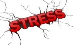 Le stress : Comment le chasser grâce à un traitement naturel ?