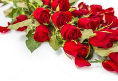 Valentine red roses. Be My Valentine. $6.00