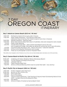 Get ready for the ultimate oregon coast road trip with all the best stops. We did 363 miles of coast over a week, but we recommend taking your time. Oregon Coast Roadtrip, Oregon Vacation, Oregon Road Trip, West Coast Road Trip, Oregon Trail, Pacific Coast Highway, Road Trips, Pacific City Oregon, Coos Bay Oregon