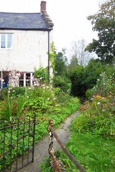 lush English gardens, how I miss you