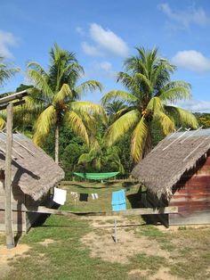 Exotische Reizen Suriname - Hutten in de jungle van Suriname Project 3, Our World, South America, Brazil, Buildings, Backgrounds, Hotels, Tropical, Culture