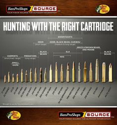 Use This Rifle Caliber Chart to Pick the Right Ammo for Hunt.-Use This Rifle Caliber Chart to Pick the Right Ammo for Hunting -
