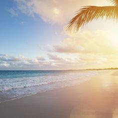 """Das Paradies auf Erden Du gehörst eher zum Typ """"Frostbeule"""" und würdest am liebsten den kalten Wintertemperaturen hierzulande entfliehen? Viel lieber würdest du an einem Strand liegen und die S"""