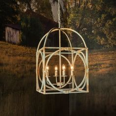 While it does resemble a birdcage in shape we appreciate its efficiency as a rustic metal light fixture. Hanging chain and canopy included. Cage Pendant Light, Lantern Pendant, Birdcage Chandelier, Coastal Chandelier, Antique White Paints, Wrought Iron Chandeliers, Small Chandeliers, Fence Lighting, Hallway Lighting