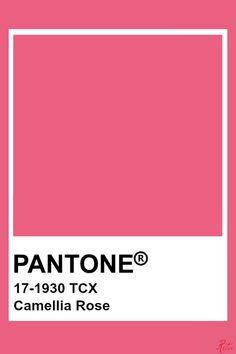 Pantone Tcx, Pantone Swatches, Color Swatches, Pantone Colour Palettes, Pantone Color, Colour Pallette, Colour Schemes, Wedding Color Pallet, Wedding Colors