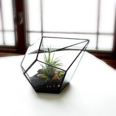 I so so so want this for my desk :(   Glass Terrarium with Air Plant Geometric by JechoryGlassDesigns, $69.00