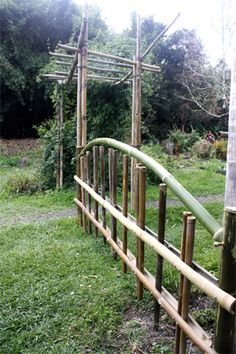 Bamboo fence and arbor