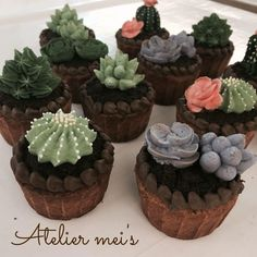 Cactus  and succulent cupcakes by Atelier mei's