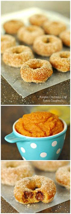 Pumpkin Chocolate Chip Doughnuts are perfect for fall. This baked donut recipe is so easy to make and I love them combination of pumpkin and chocolate!