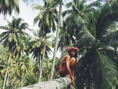 » life under the sun » free spirit » wanderer » tropical island » white sand beaches » palm paradise » ocean breeze » gypsy soul » living free »