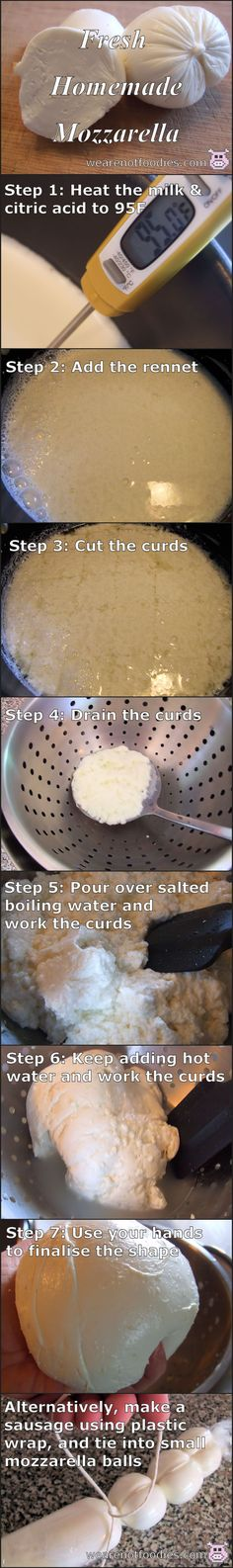 Step by step photo guide for making fresh home-made mozzarella