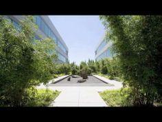 Lesbian Landscape Architect Portland