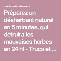 Préparez un désherbant naturel en 5 minutes, qui détruira les mauvaises herbes en 24 h!  - Trucs et Bricolages