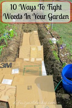 10 Ways To Keep Weeds Out Of Your Garden - Who has time to pull weeds? Learn how to keep weeds out! 10 Ways To Keep Weeds Out Of Your Garden - Who has time to pull weeds? Learn how to keep weeds out! Garden Weeds, Herb Garden, Lawn And Garden, Vegetable Garden, Garden Mulch, Garden Pots, Killing Weeds, Organic Weed Control, Weed Barrier
