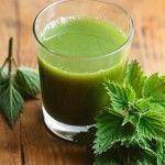 Sucul de urzica, probabil cel mai puternic remediu pentru curatarea organismului de toxine Parsley, Glass Of Milk, Pudding, Drinks, Health, Desserts, Food, Green, Autumn