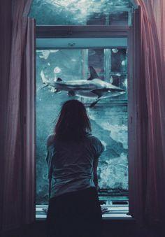 Requin, Flora Borsi